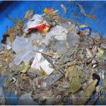 Rác thải từ đại dương